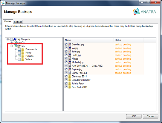 Anatra online backup NAS